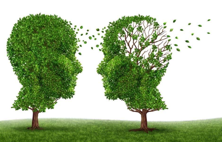 blog-alzheimer-disease-natural-cure