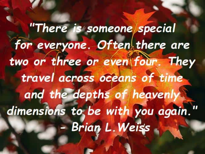 Brian-Weiss-Quotes-Soul-Past-Life-Reincarnation-Images