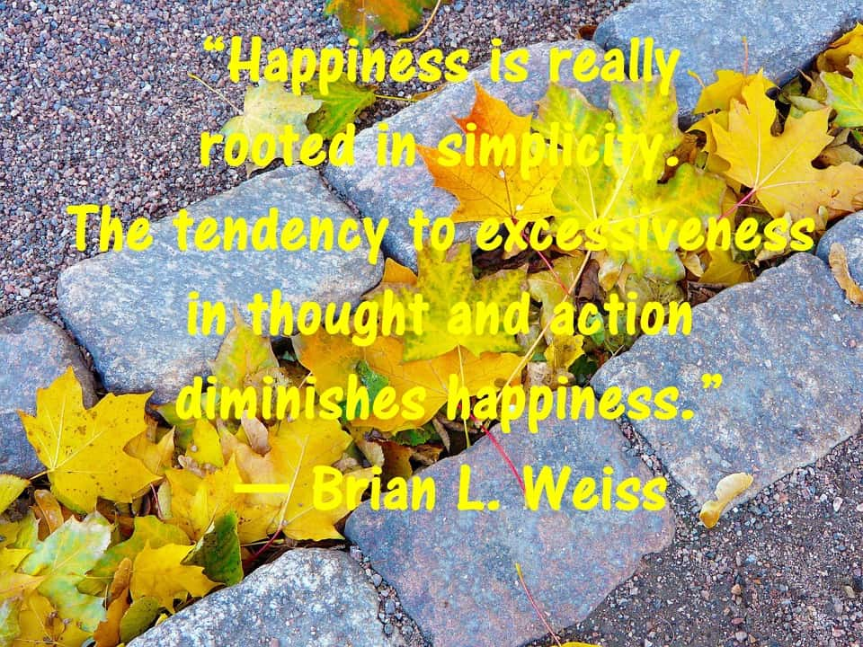 Brian Weiss Quotes many lives many masters past life regression Book