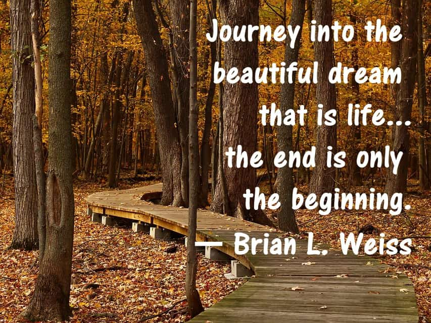 Brian Weiss Quotes Many Lives Many Masters Book Past Life Regression
