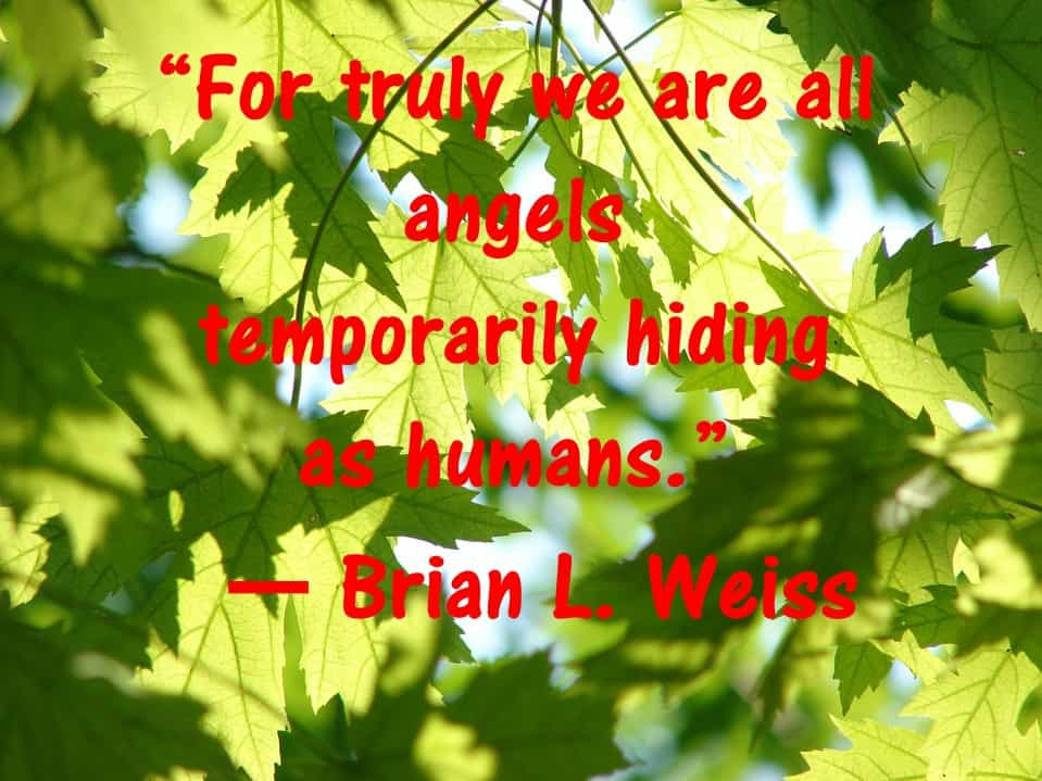 Human being Angels Past Life Quotes