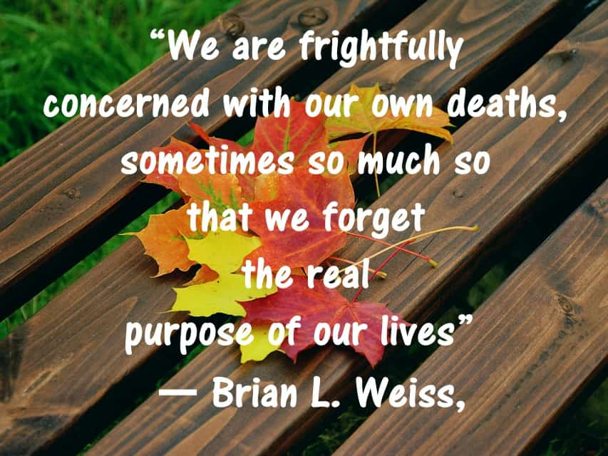 brian weiss quotes past life regression Purpose of life and death quote