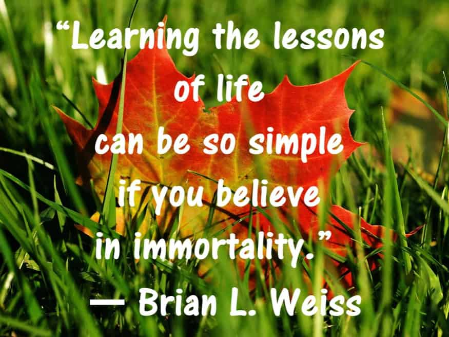 brian weiss quotes past life regression 1 (6)