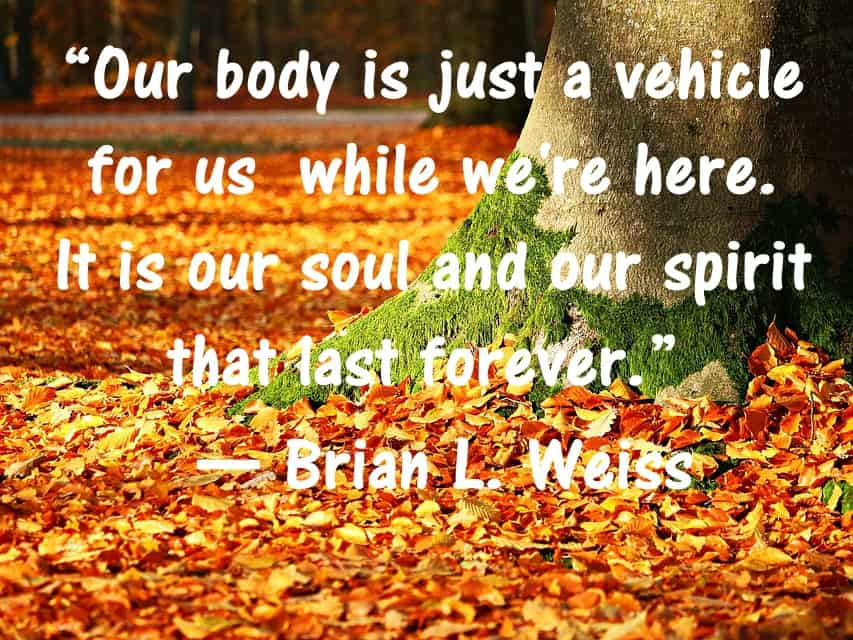 Soul Spirit Last Forever Many Lives Many masters Book Quotes