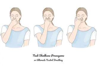 pranayam-anulom-vilom-naadi-shodhan-alternate-nostril-breathing-steps-benefits