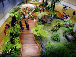 beautiful-plants-singapore-airport-indoor-garden