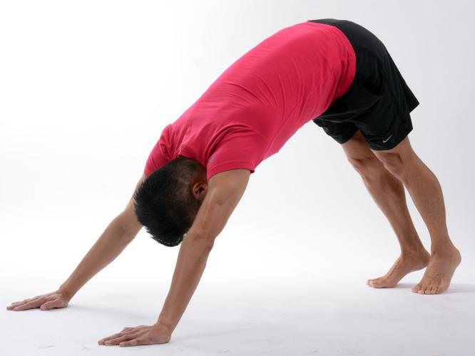 downward-facing-dog-pose-yoga-back-pain-relief